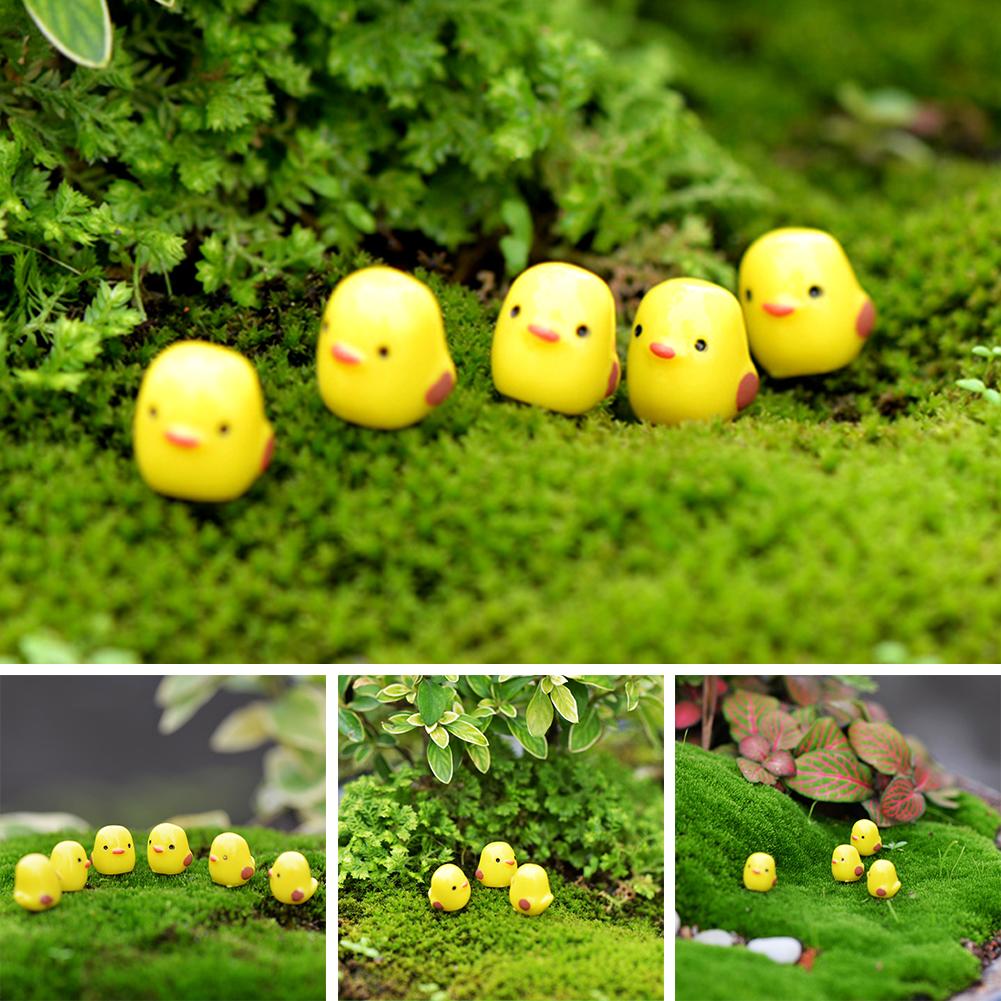Fai da te decorativa da giardino casa in miniatura - Giardino in miniatura ...
